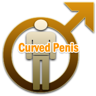 Curved Penis Reason