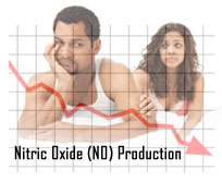 Nitric Oxide Decline