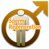 Sperm Regeneration after Ejaculation