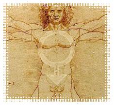 Vitruvian Male