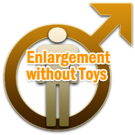 Enlargement without Toys