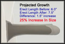 Projected Penis Growth