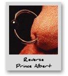 Reverse Prince Albert